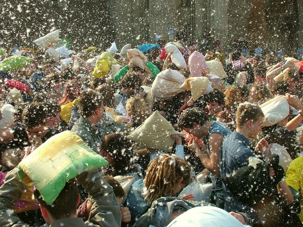 PillowFight277271